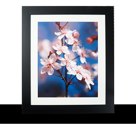16x20 Framed Print - Black